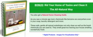 14 day beauty detox bonus guide
