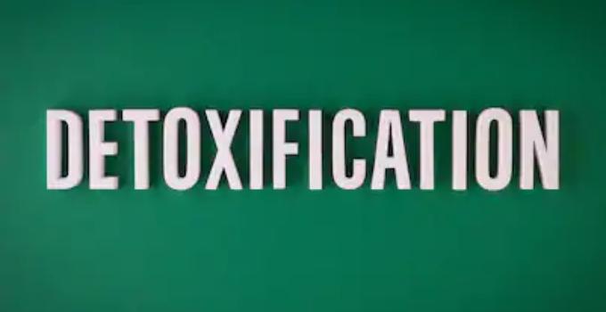 best blogs for detoxification tips