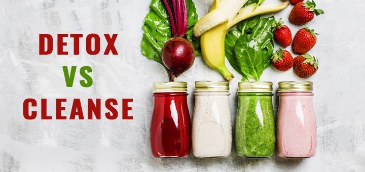 Best belly detox programs 2020